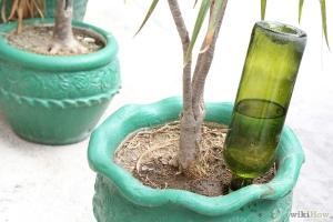 900px-Make-Wine-Bottle-Plant-Waterer-Step-8
